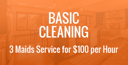 Basic Cleaning - 3 Maids Service for $100 per Hour